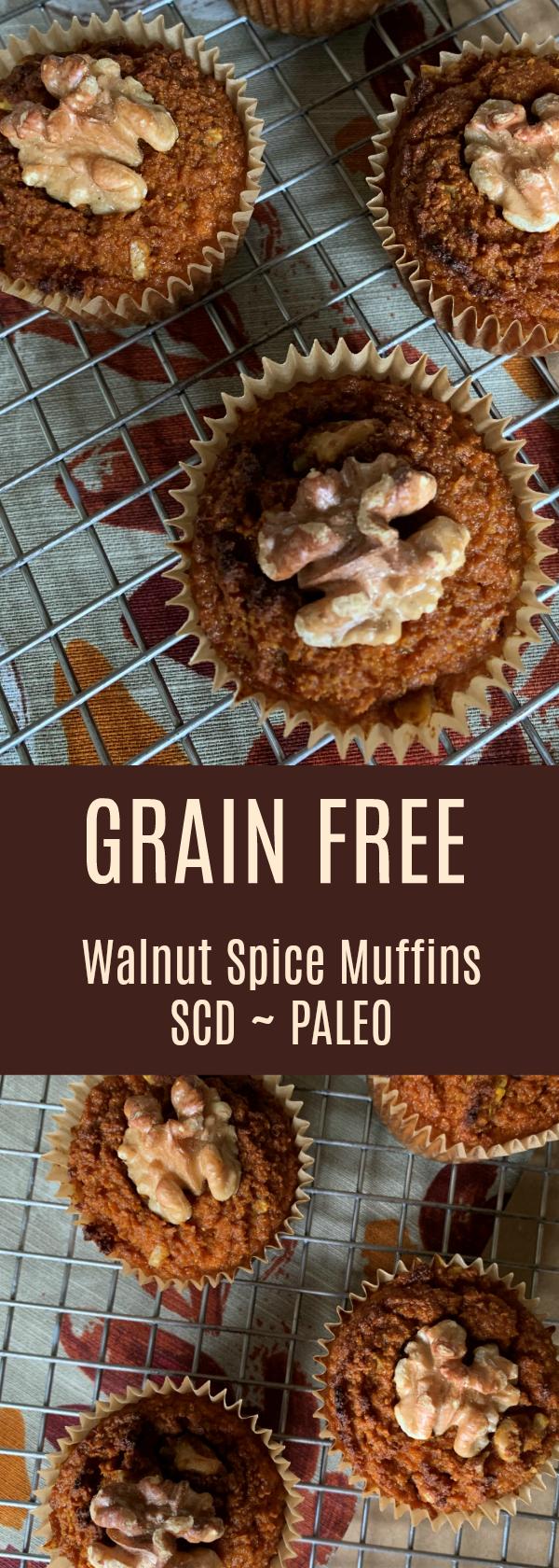 Grain Free Walnut Spice Muffins - SCD, Paleo, Dairy Free