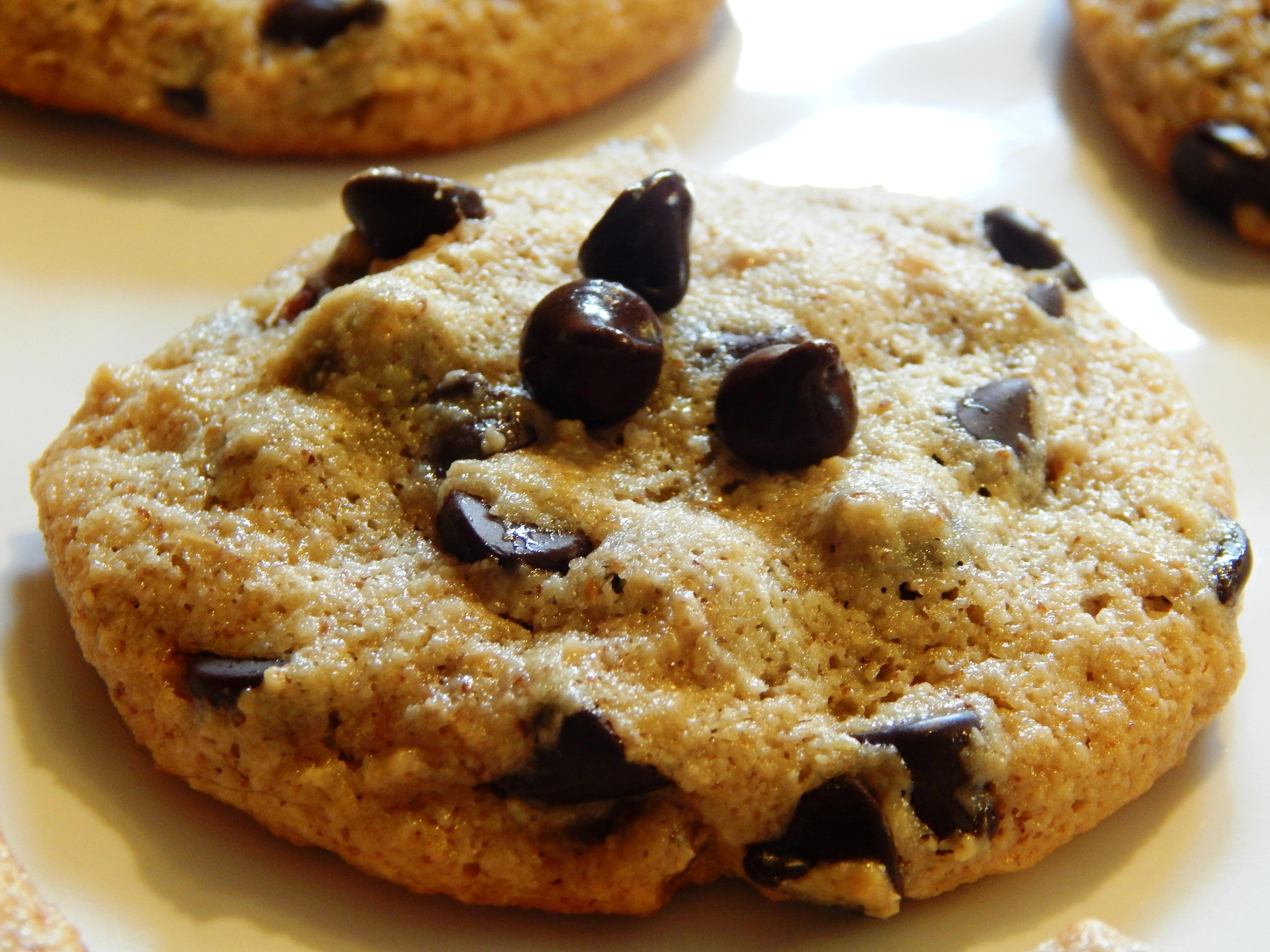 Ultimate Grain Free Chocolate Chip Pecan Cookies