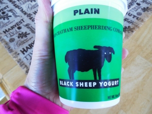 black-sheep-yogurt