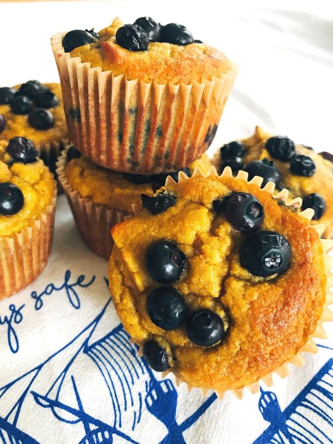Gluten Free Coconut Flour Blueberry Muffins