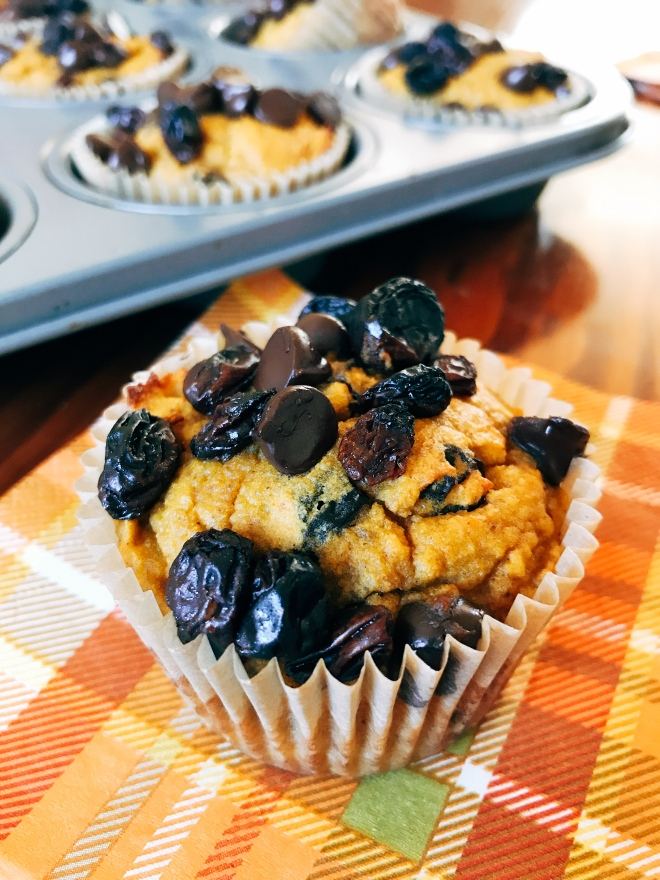 Pumpkin Spice Muffins with Chocolate Chips and Raisins - Grain Free