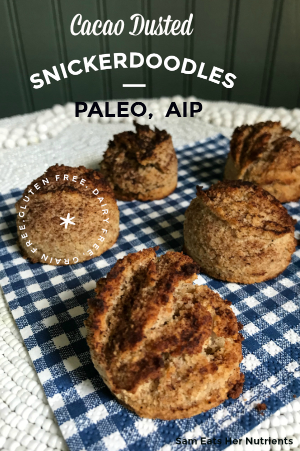 Cacao Dusted Paleo AIP Snickerdoodles