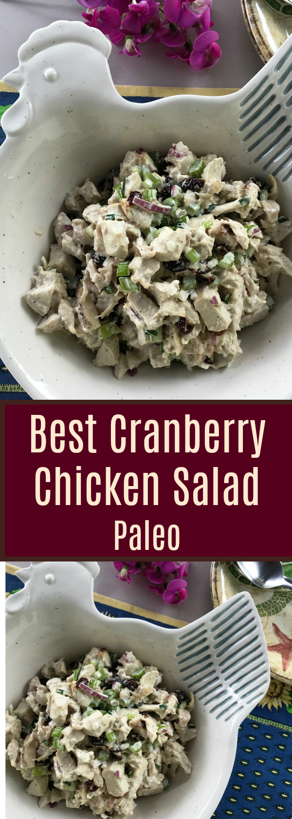 Best Cranberry Chicken Salad Healthy and Delish