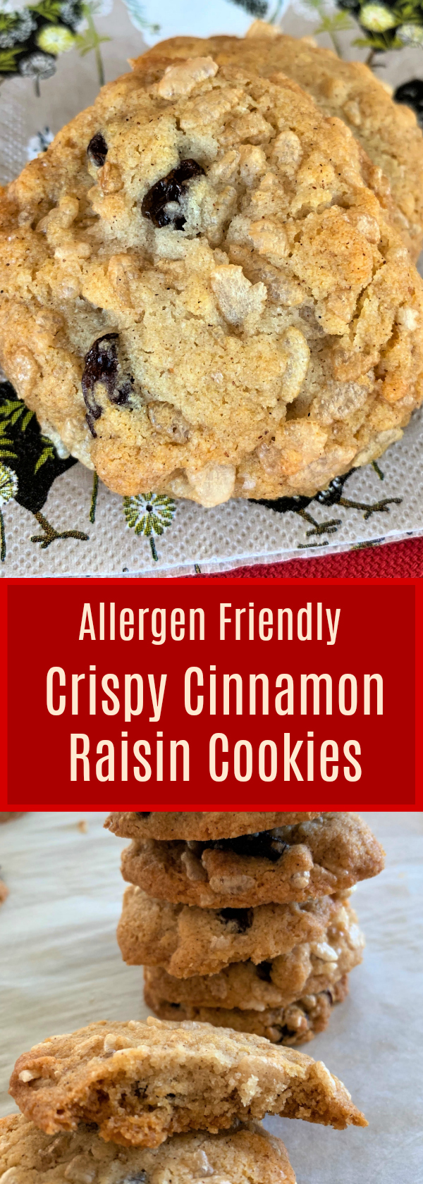 Allergen Friendly, Chewy and Crispy Cookies!