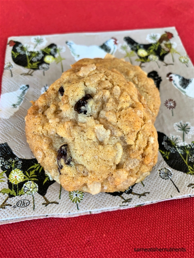 Crispy Cinnamon Raisin Cookies Gluten Free Egg Free Nut Free