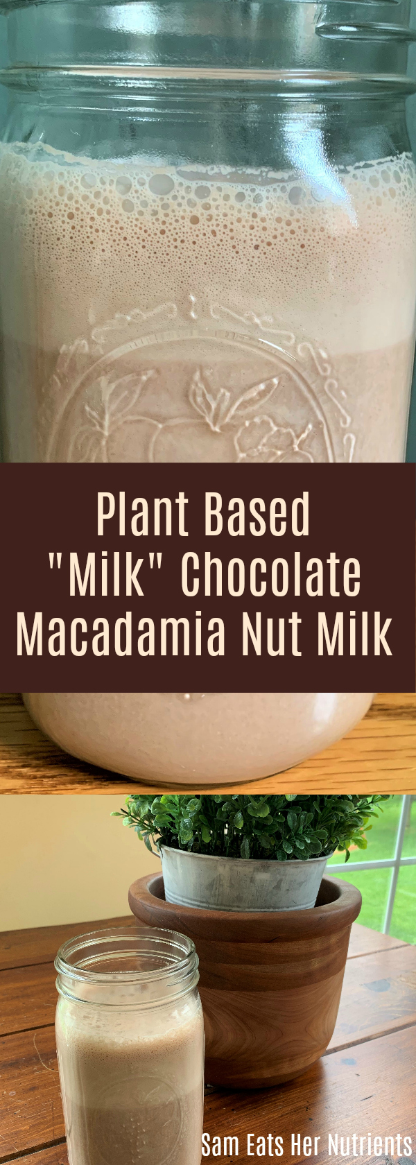 Plant Based Milk Chocolate Macadamia Nut Milk Gluten and Dairy Free